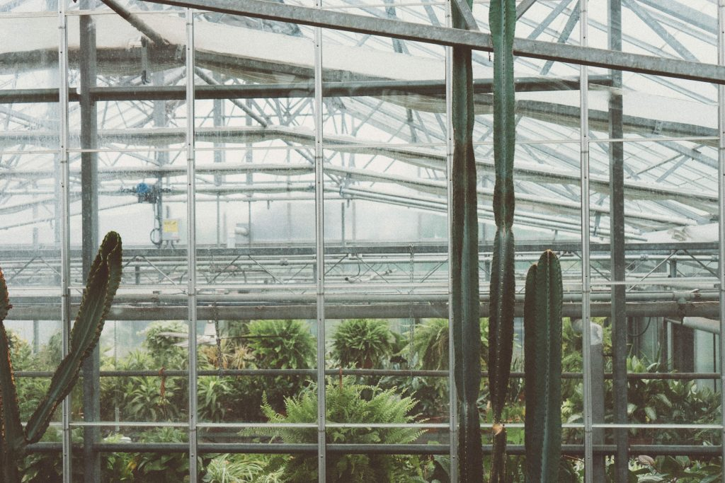 The engineering behind the greenhouses – ventilation
